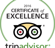 2016 Trip Advirsor certificate of Excellence