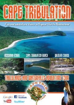 Cape Tribulation Overnight Tour