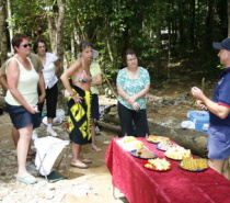 Exotic Tropical Fruit Tasting Emmagen Creek