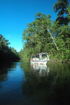 Solar Whisper Wildlife Cruises