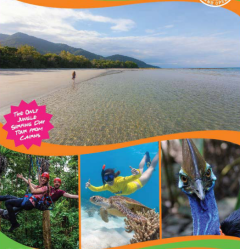 Daintree Experience & Jungle Surfing