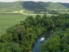 Daintree, Cape Tribulation & 4WD Bloomfield Track