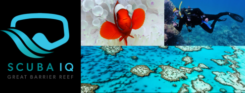 THE GREAT BARRIER REEF & SCUBA IQ