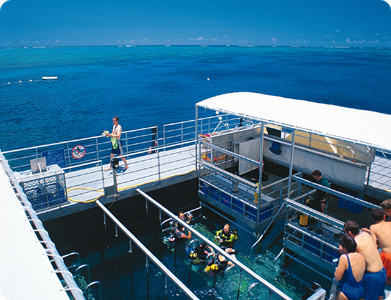 The Platform at Agincourt Reef Site