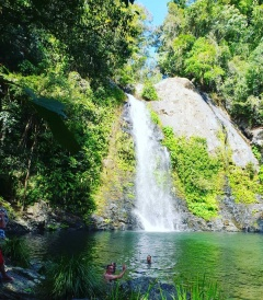 Cassowary Falls is a great place to be