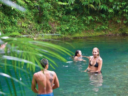 Aquarius Low Isles and Daintree Tours Package