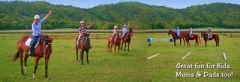 Port Douglas Horse Riding