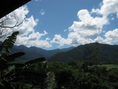 Mossman Gorge Bed & Breakfast